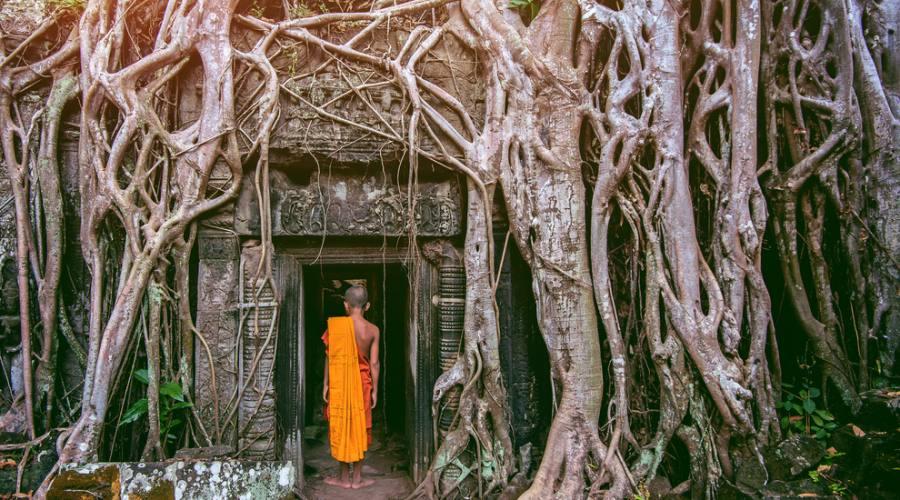 Monaci a Phnom Penh