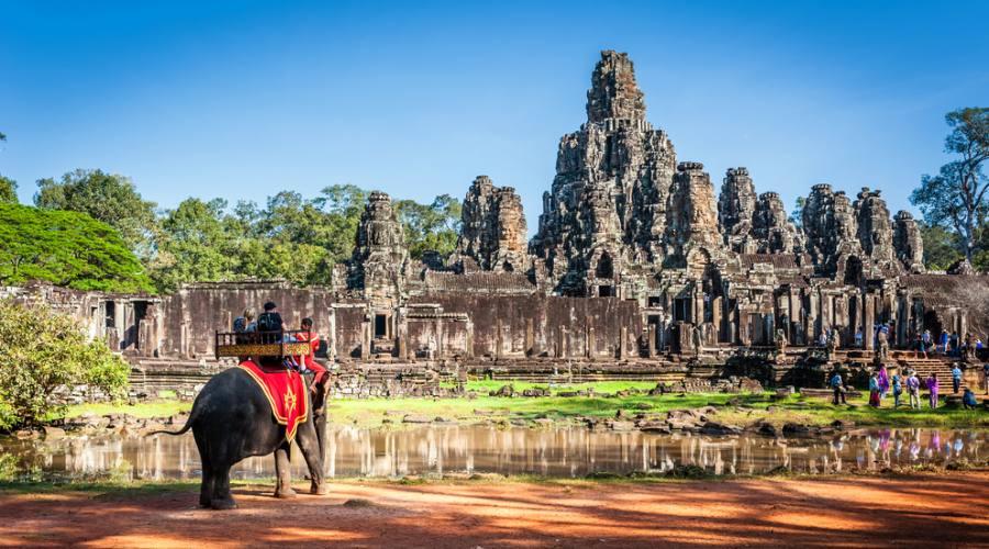Trekking sull'elefante a Siem Reap