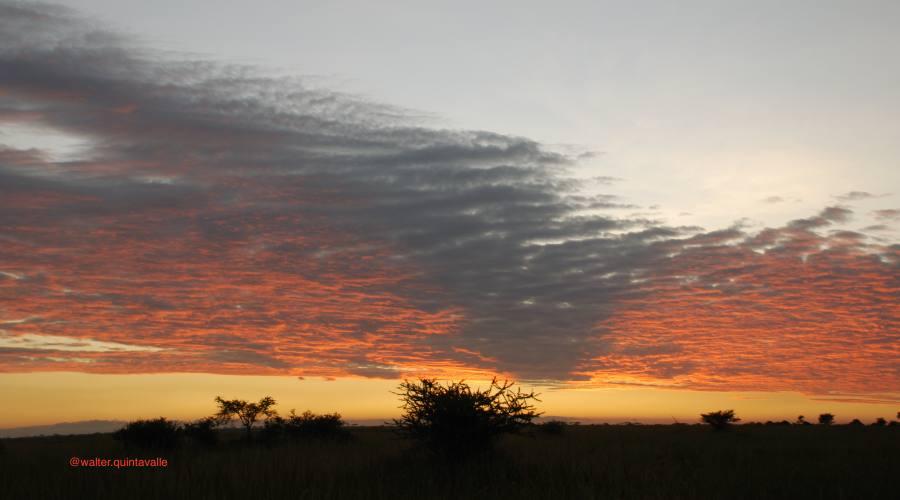 L'alba nel Serengeti