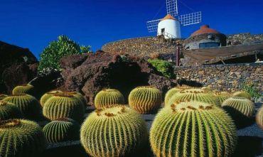 Il Ponte di Ognissanti tra due isole: Fuerteventura e Lanzarote scopri le due isole in una settimana