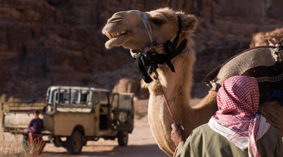 Beduini del Wadi Rum