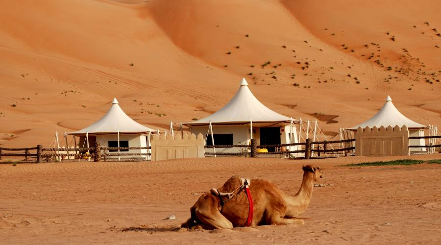 Desert Night Camp - Wahiba Sands
