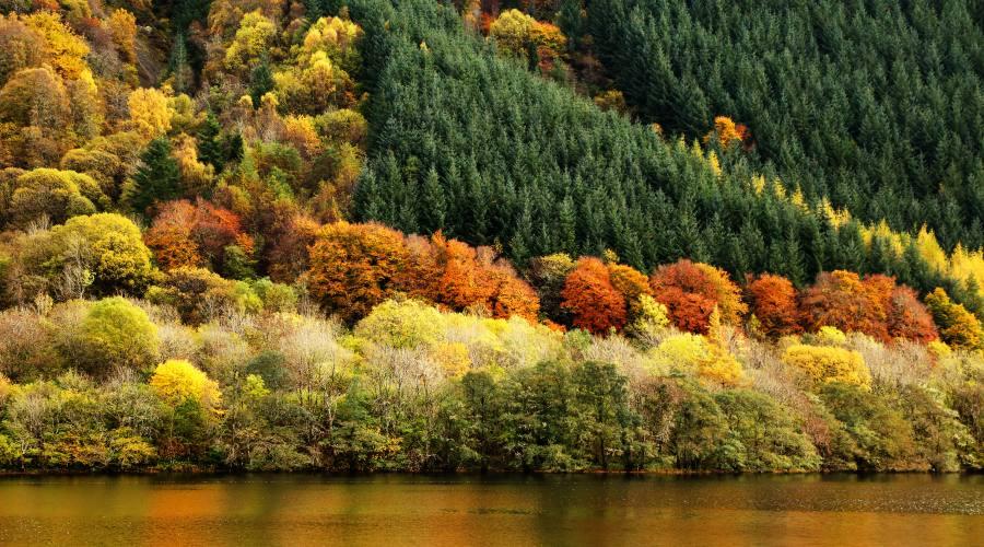 I colori delle Highlands