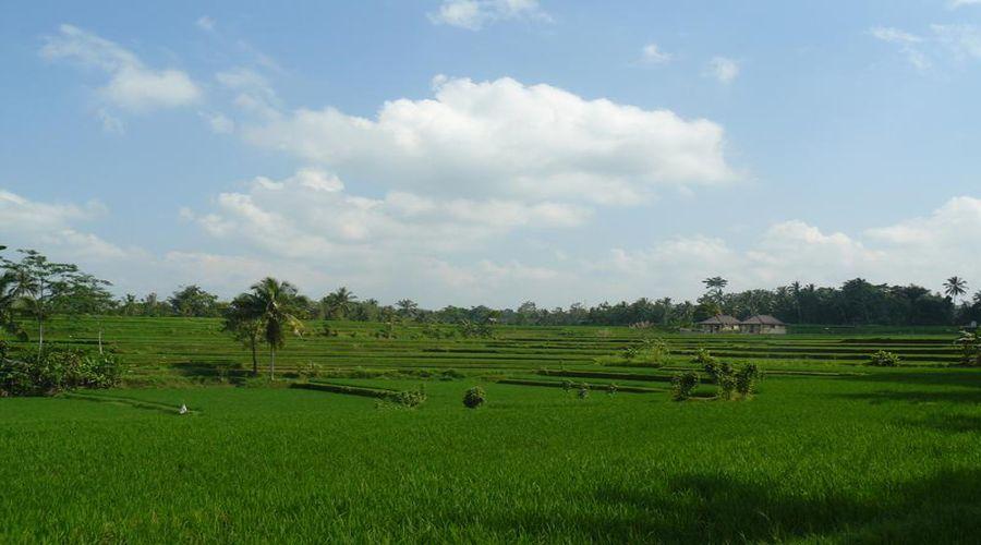 Visita ai campi indonesiani