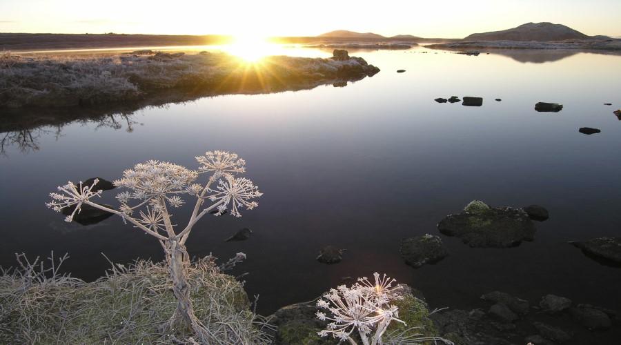 Lago del Thingvellir