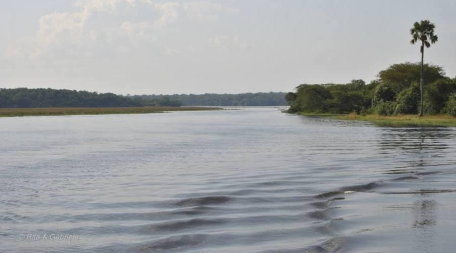 Verso le Murchison Falls