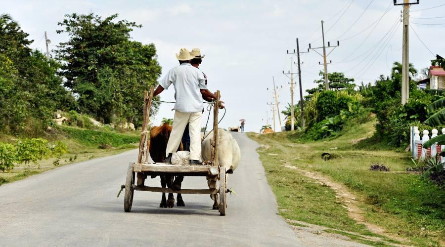 Paesaggi agricoli dell'ovest di Cuba