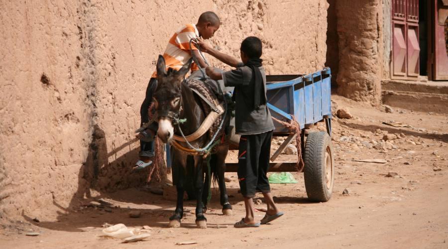 Quotidianità Berbera