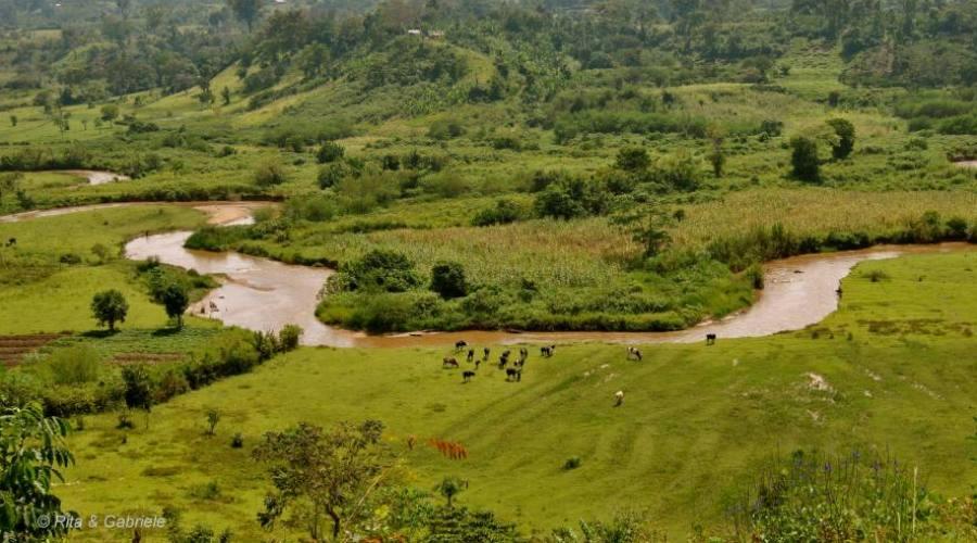 Panorama Uganda