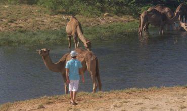 Le Meraviglie del  Dhofar, nella Terra delle