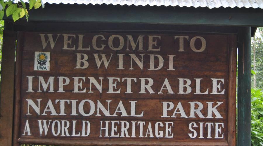 Bwindi NP