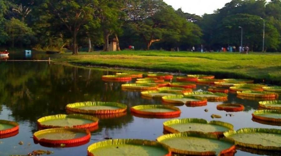 Naturaleza virgen en Tamil Nadu