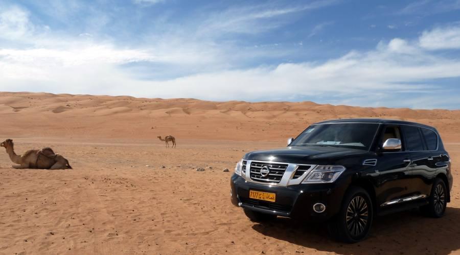 Fuoristrada verso il deserto