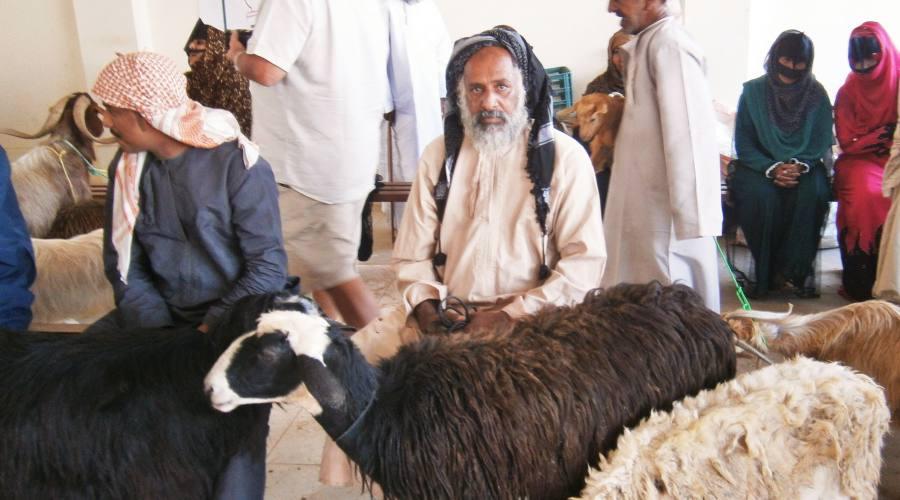 Nizwa - il pastore