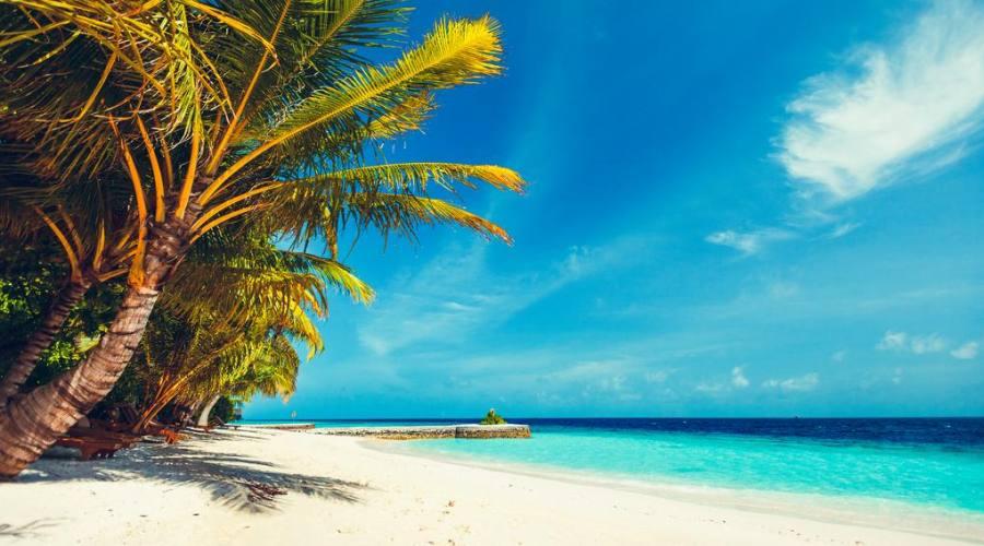Spiaggia bianca, palme e oceano infinito