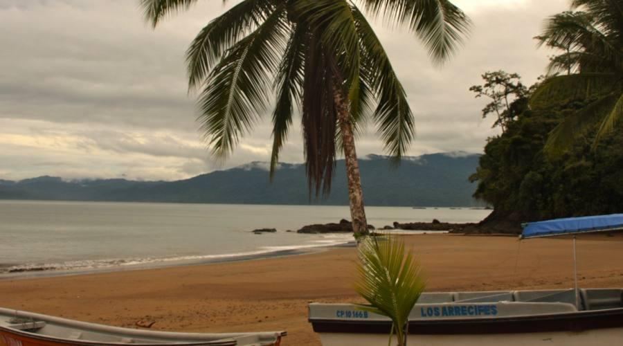 Tour e Pacifico Colombiano con avvistamento delle Balene: Bahia Solano