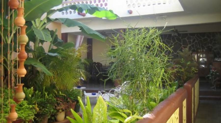 Giardino, Casa Particular, Trinidad