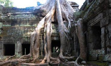 Tour di gruppo - Nel regno degli Khmer