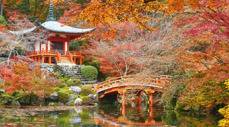 Kyoto - Foliage Autunnale