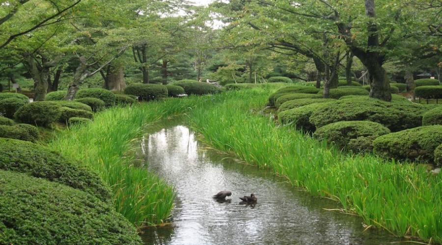 Kyoto - Giardini