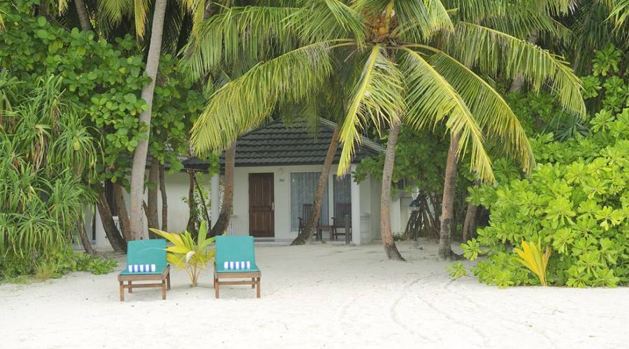 Holiday Island: la vegetazione rigogliosa di fronte al vostro bungalow