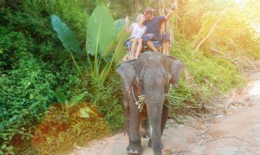 Viaggio di nozze: Tour di Ceylon e isole Maldive