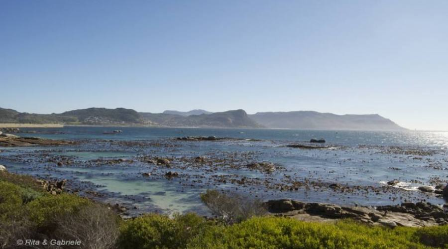 Panoramica Cape Town