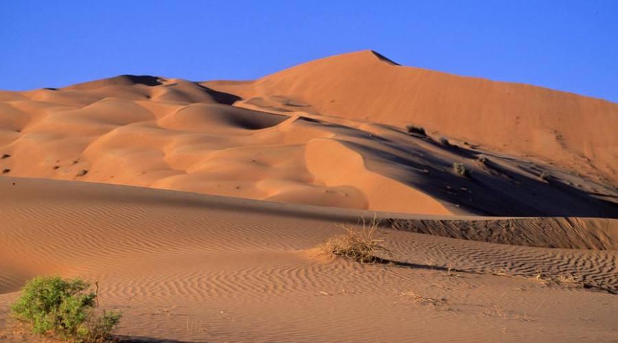 Wahiba Sands - il deserto