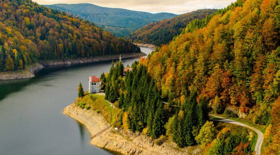 In Transilvania
