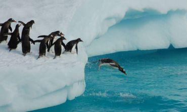 Oltrepassandoil Circolo Polare Antartico