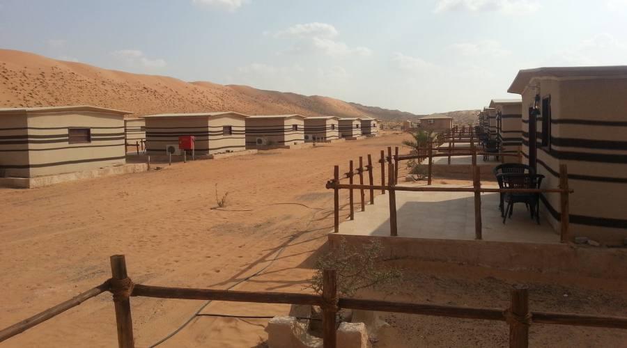 Arabian Orix Camp