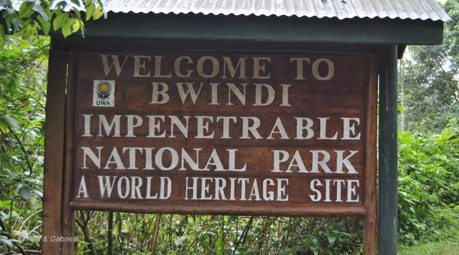 Ingresso di Bwindi