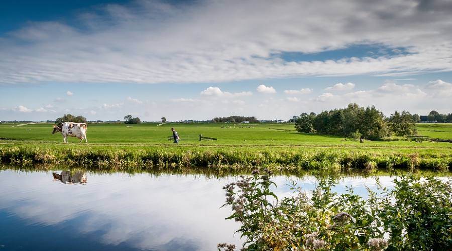 agricoltura a Zanjan
