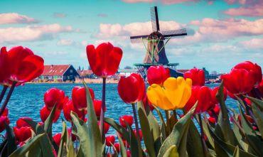 Il Grande Nord: Cicloturismo in barca tra mulini e tulipani