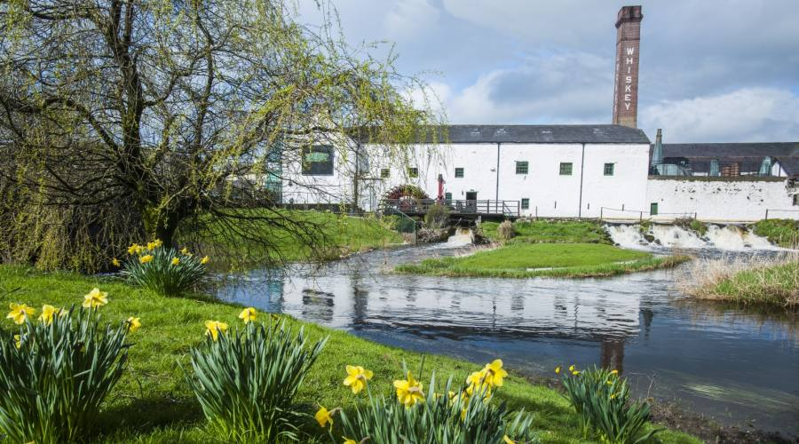 Distilleria di Locke in Kilbeggan