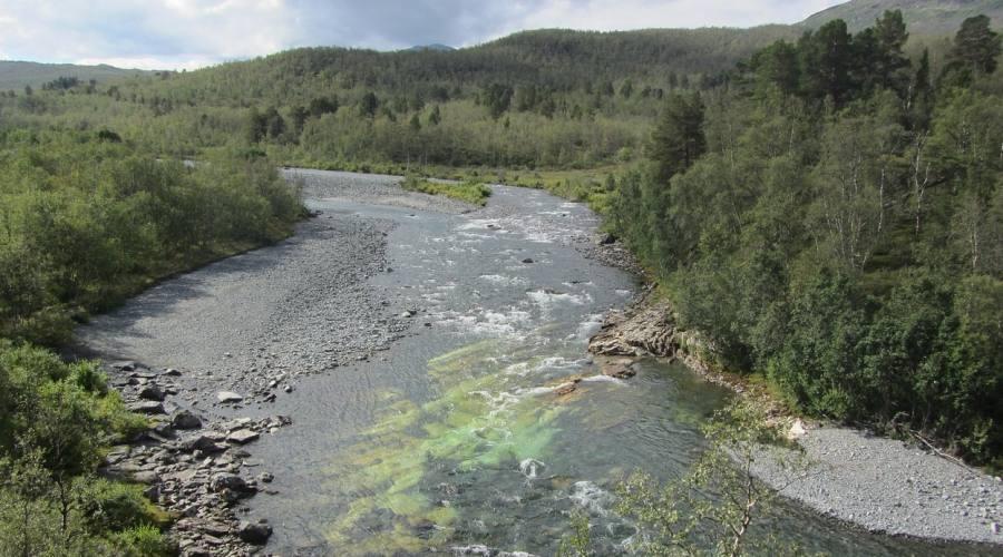 Kiruna Park