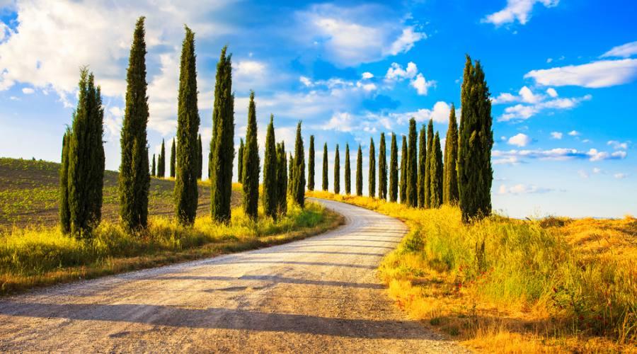 Siena, paesaggio rurale toscano