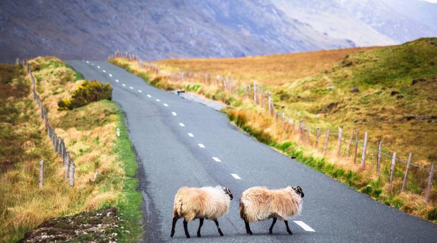 Strade di Irlanda