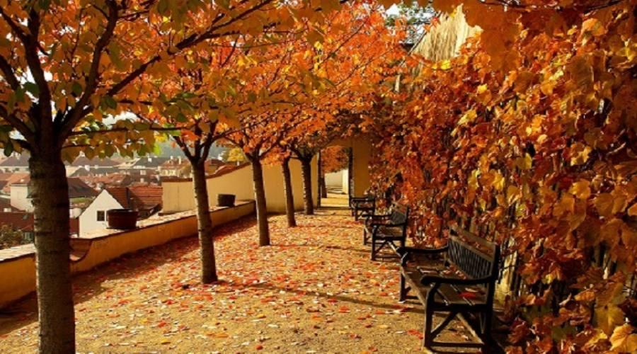 colori d'inverno praghesi