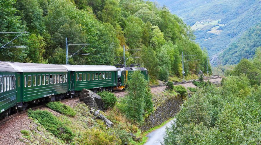 In treno attraverso le montagne scandinave, Norway in a Nutshell