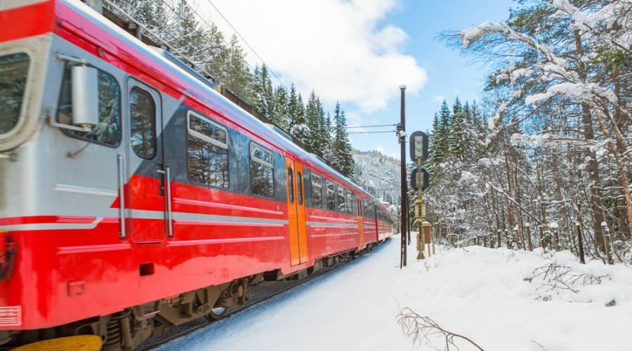 Treno da Oslo a Bergen in inverno, Norway in a Nutshell