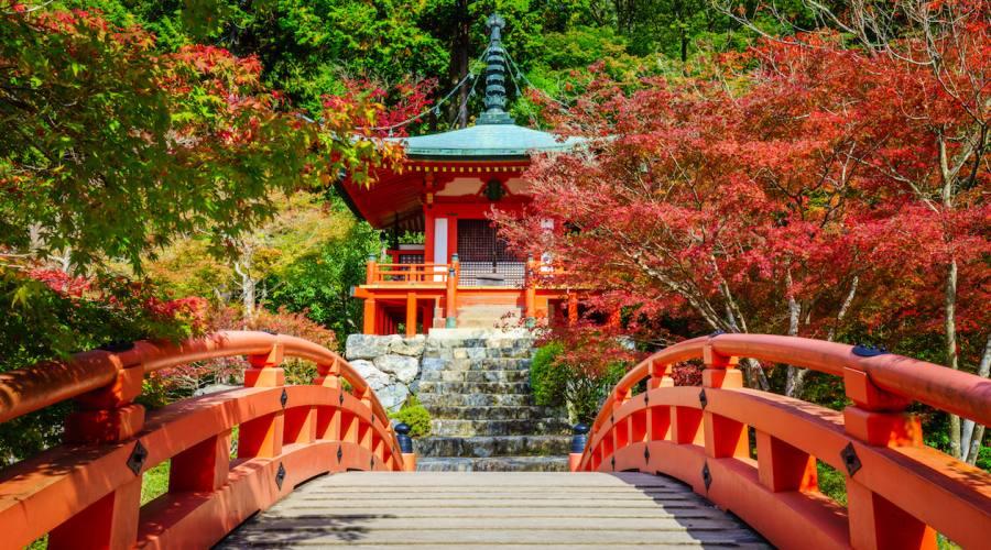 Kyoto -Tempio Daigo-ji