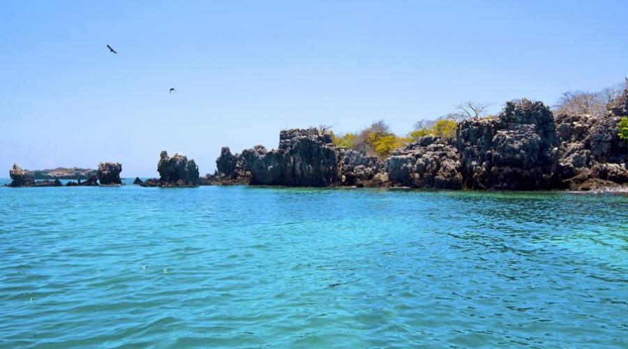 Isla de la mafia - parque marino