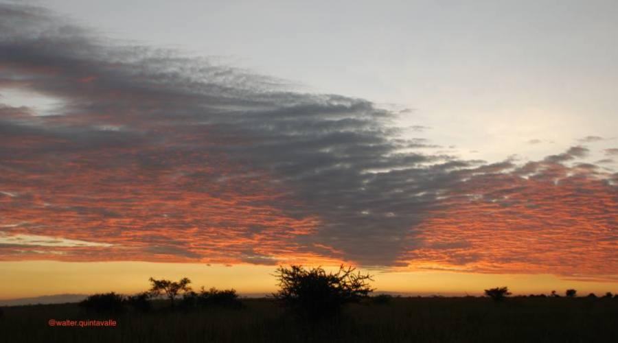 Amanecer en el Serengeti