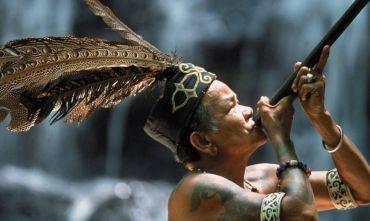 Natura e colori della Costa Nord -Tour del Sarawak e Mare