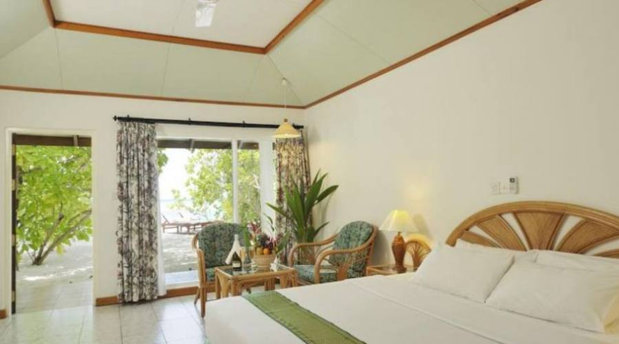 habitacion Standard beach bungalow
