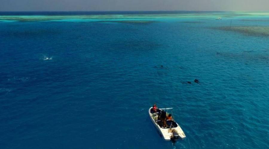 navegar por la isla
