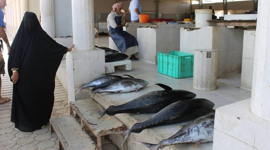 Souq del pesce a Muscat