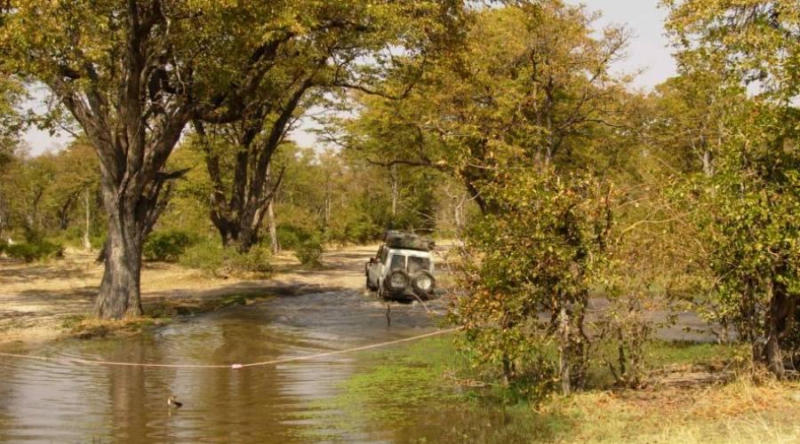 visión en el Kruger