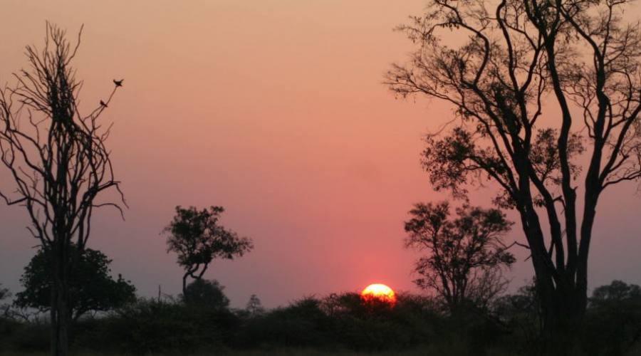 amanecer en el Kruger